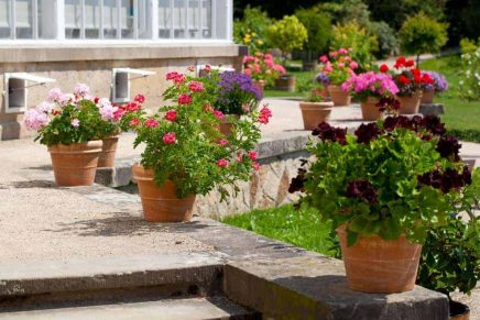 gardening services perth