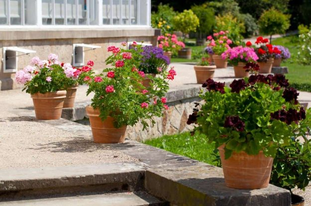 garden-landscaper-armadale-garden-maintenance-1_orig