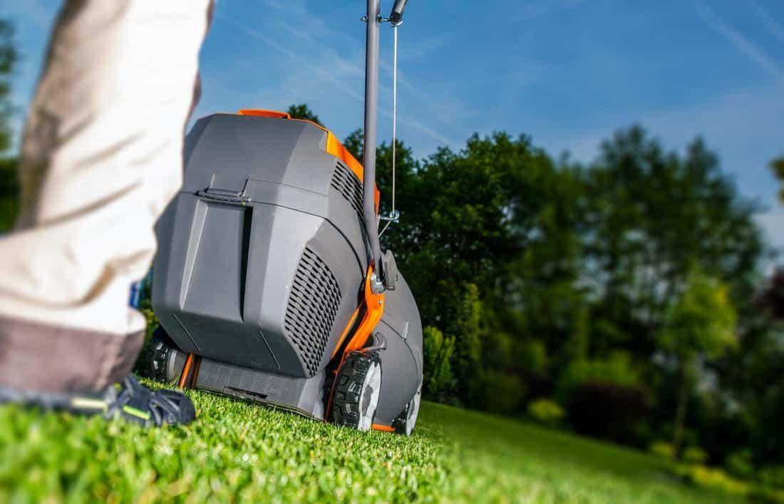 garden-landscaper-armadale-lawn-maintenance-1_orig